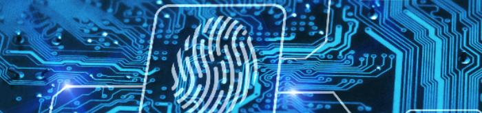 5 vulnerabilidades en la red Wi-Fi que las empresas deben combatir